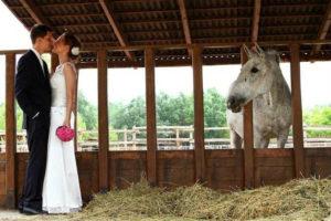 Bodor Major - esküvő