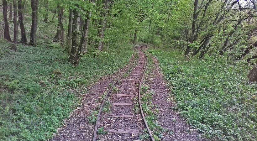 Erdei vasút a Börzsönyben