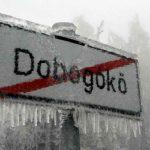 Egymillió facsemete költözik a Dunakanyarba!