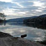 Duna-parti élmények! Ha a Duna mesélni tudna...