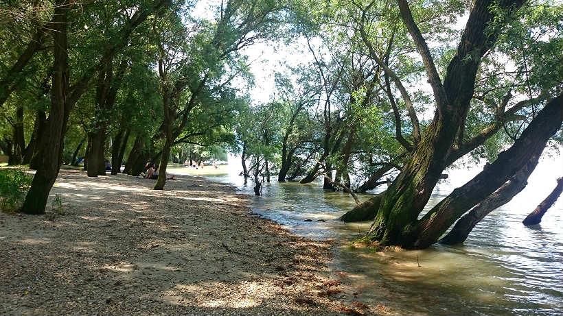 Kisoroszi Duna-part
