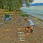 Pecázás és horgászás a Dunakanyarban
