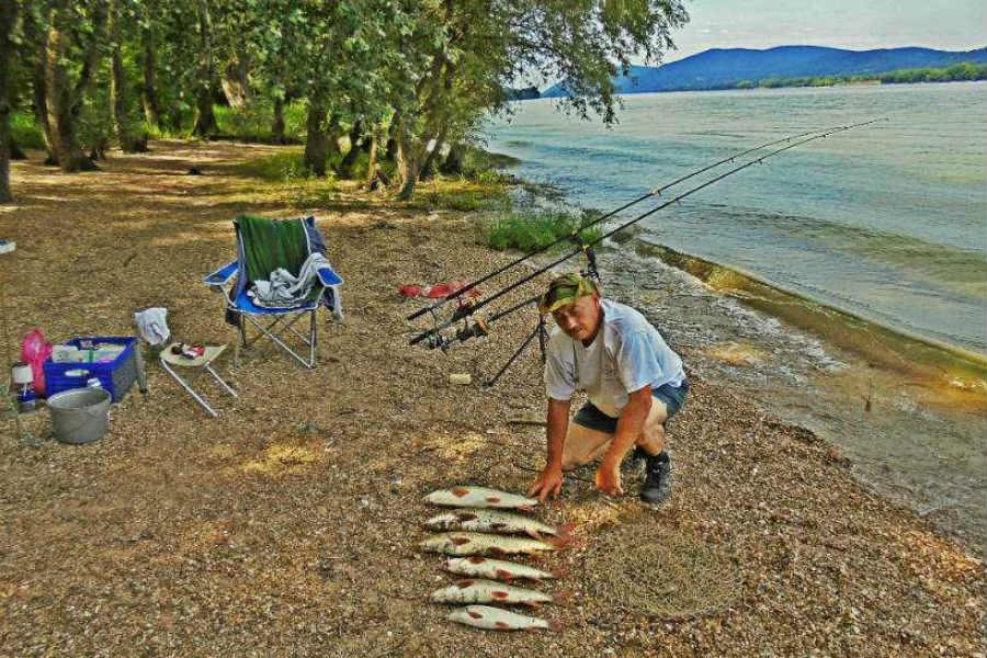 Horgászás a Dunakanyarban