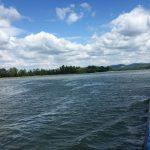 Buszjeggyel is hajóra szállhat a Dunakanyarban