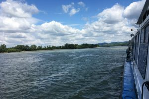 Vízi turizmus a Dunakanyarban