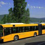 Éjszakai buszok közlekednek nyáron a Dunakanyarban!