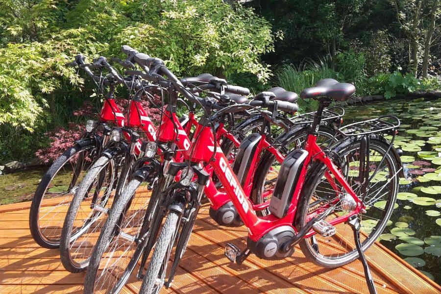 Zebegényi biciklizés