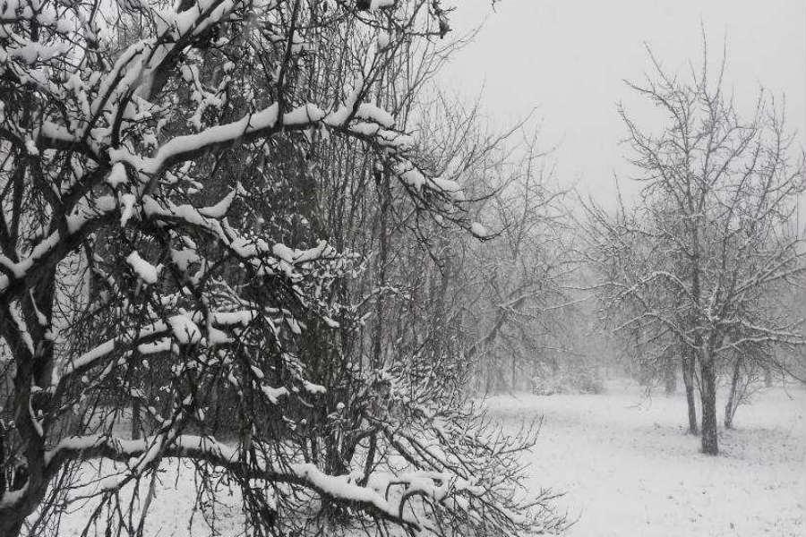 Dunakanyar télen