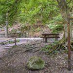 3 népszerű forrás a Pilisben, elérhető sétatávolságra!