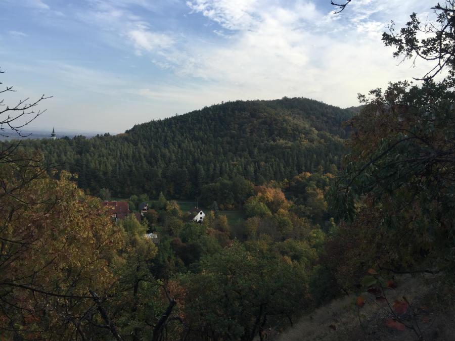 Kilátás Dunabogdányban