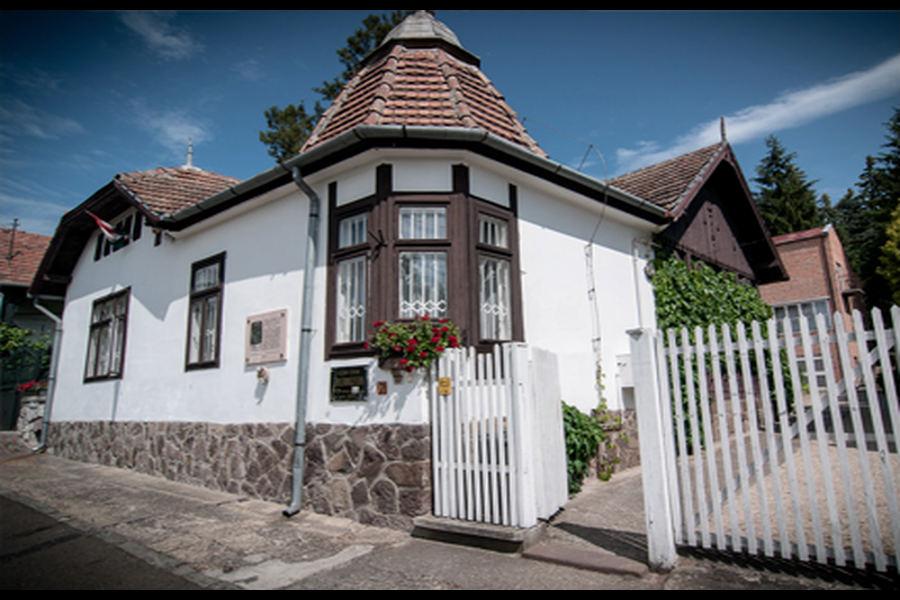 Szőnyi István Múzeum