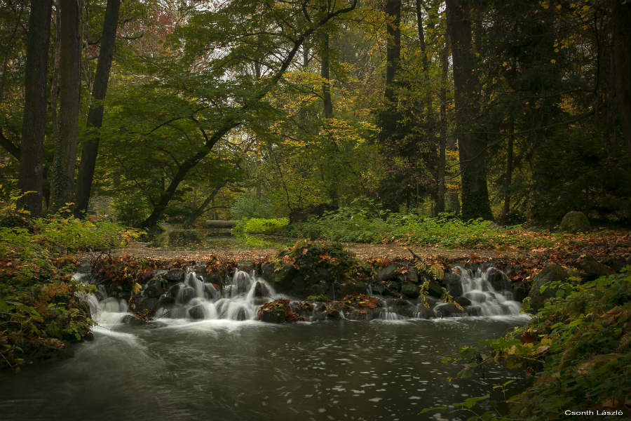 Vácrátóti Arborétum - Nemzeti Botanikus Kert