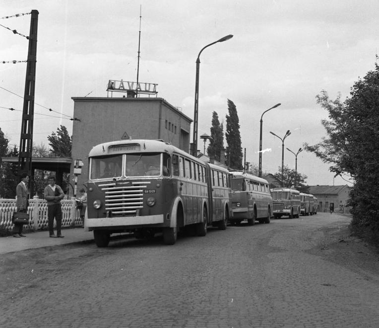 MÁVAUT, 1961