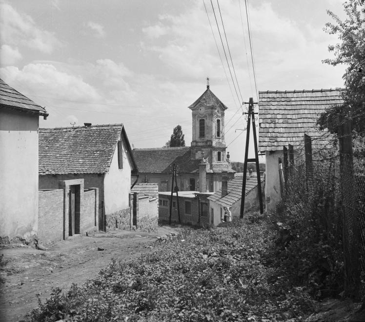 Paprikabíró utca, 1955
