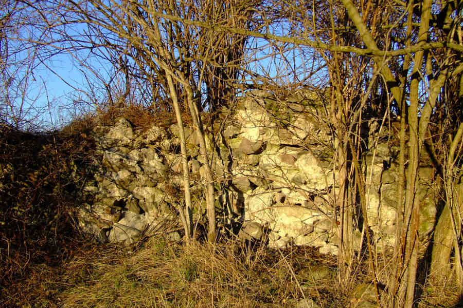 Castrum Cirpi