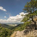Prédikálószék túra: A Vadálló-kövek különleges sziklái