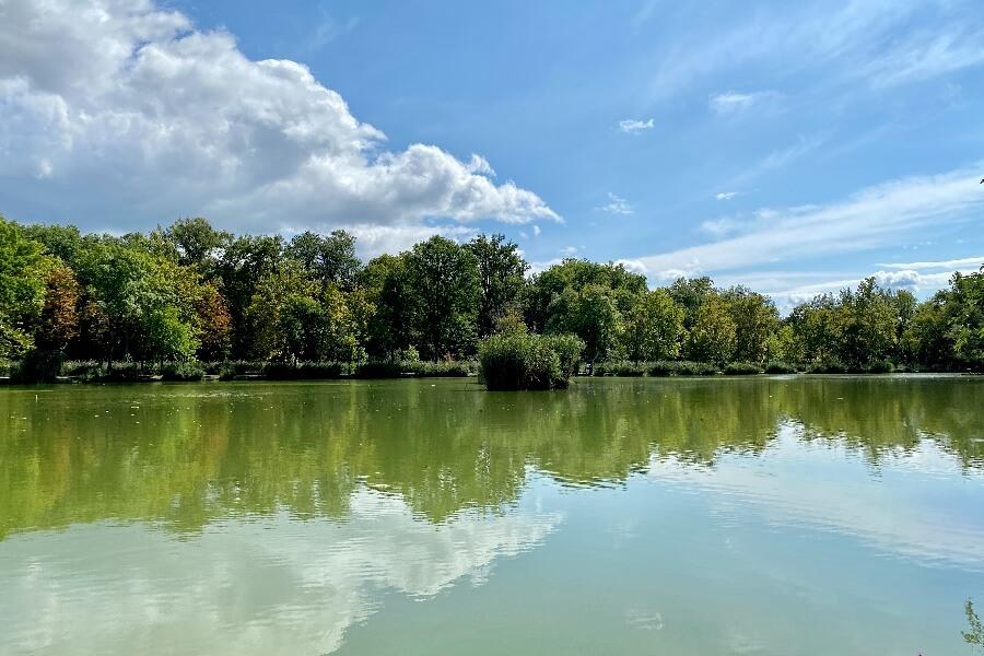 Ligeti-tó Vác